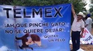 telmex pelos