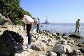 Ecosistemas de la Bahía en peligro por desechos tóxicos