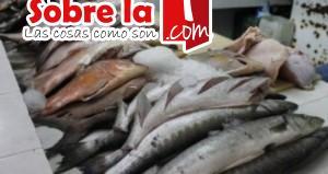pescado chetumal
