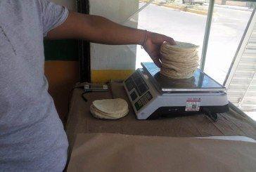 Baja el consumo de tortilla entre habitantes del sur de Q. Roo