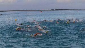etapa natación